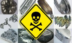 Heavy Metal Toxicology